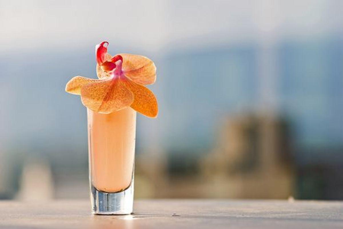 summer-cocktail-ccflcr-stewart