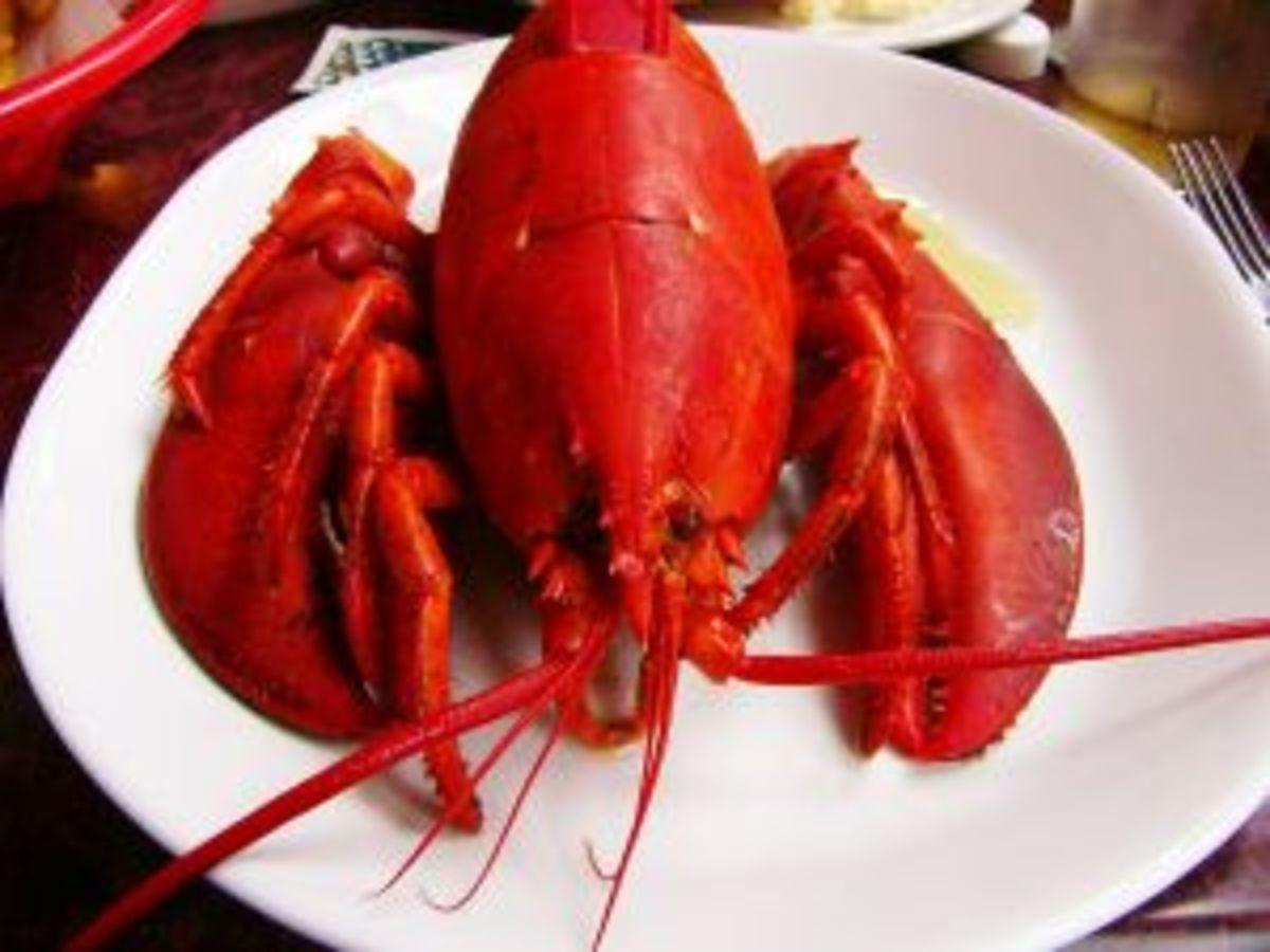 326752_lobster