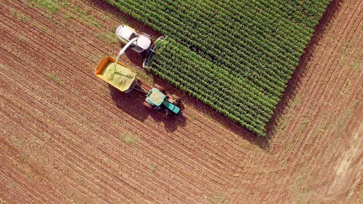 Organic Acreage Continues to Grow as Conventional Grain Prices Plummet