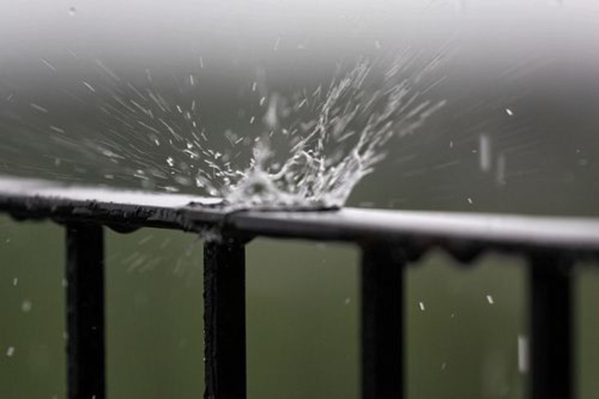 rainwater-ccflrc-douglasrwhitt