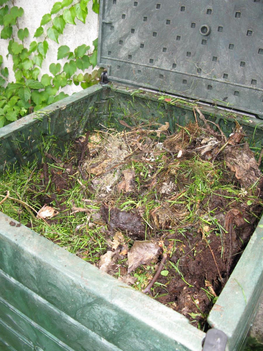 diy compost bin photo