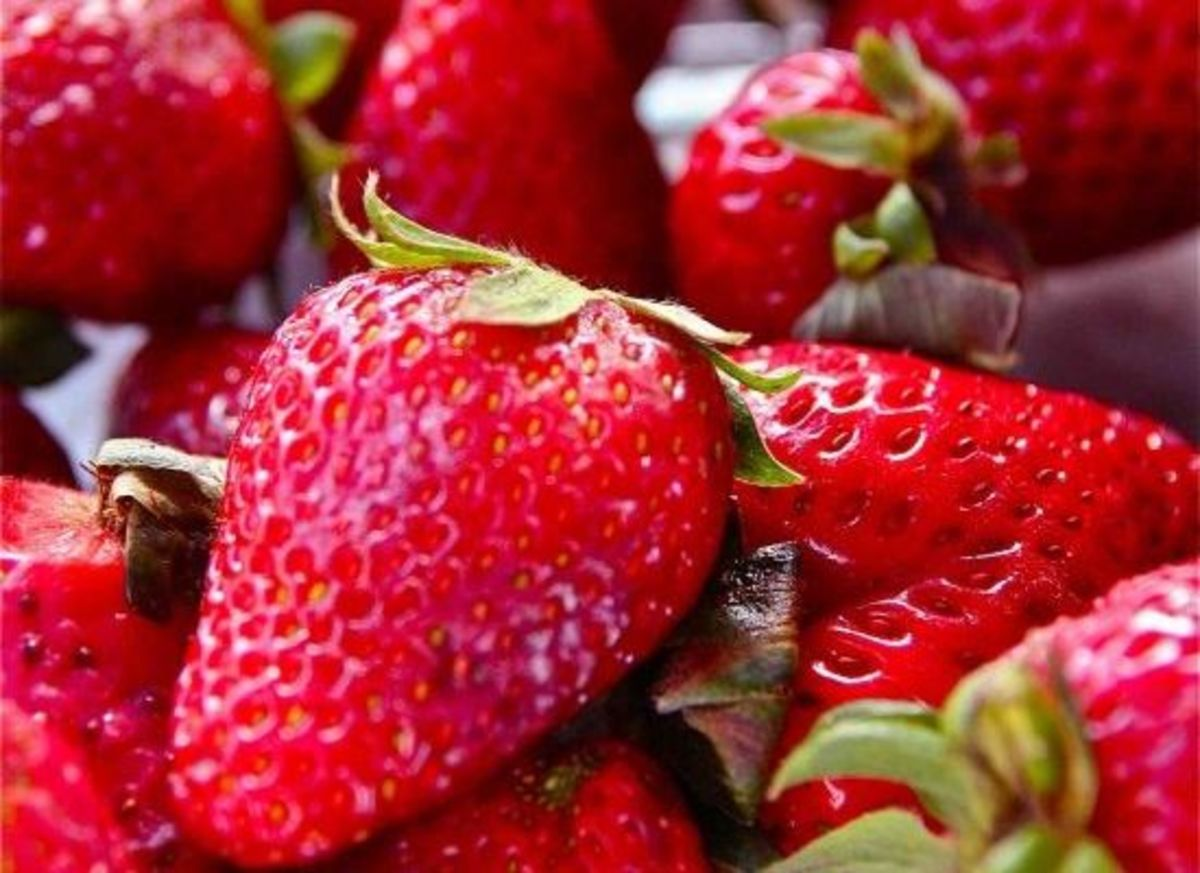 California strawberries can now be sprayed with toxic methyl iodine
