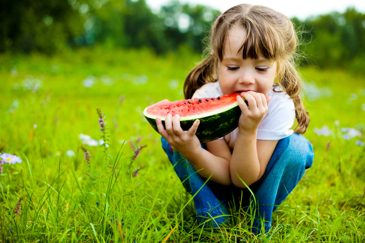 6 Types of Melon to Grow and Eat this Summer: Let the Melon Mania Begin!