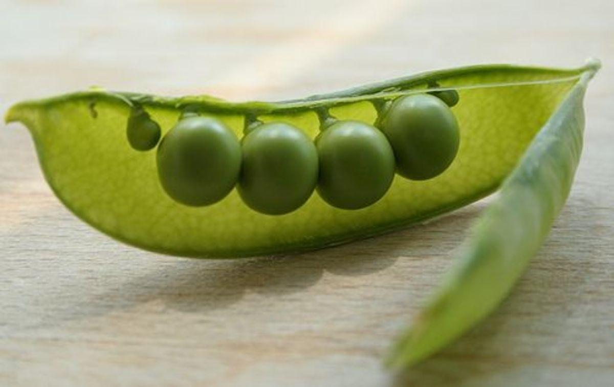 peas-ccflcr-issyeyre