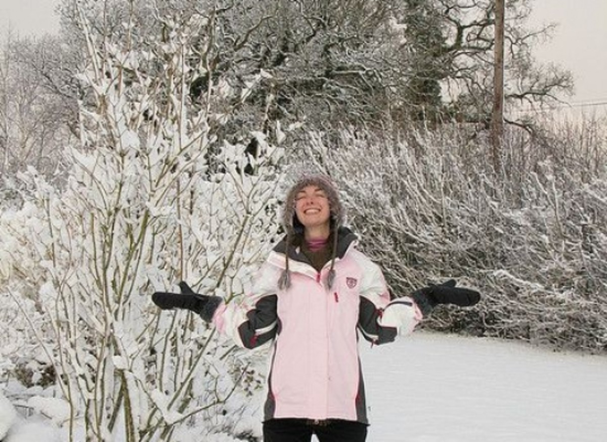 snowday-ccflcr-stephalicious