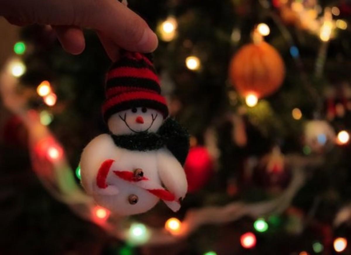 snowman-ccflcr-susivinh