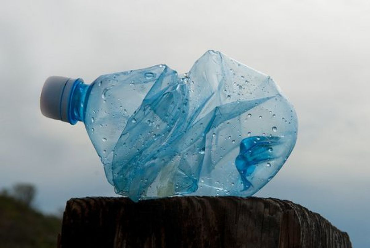 plasticbottle-ccflcr-jessewagstaff