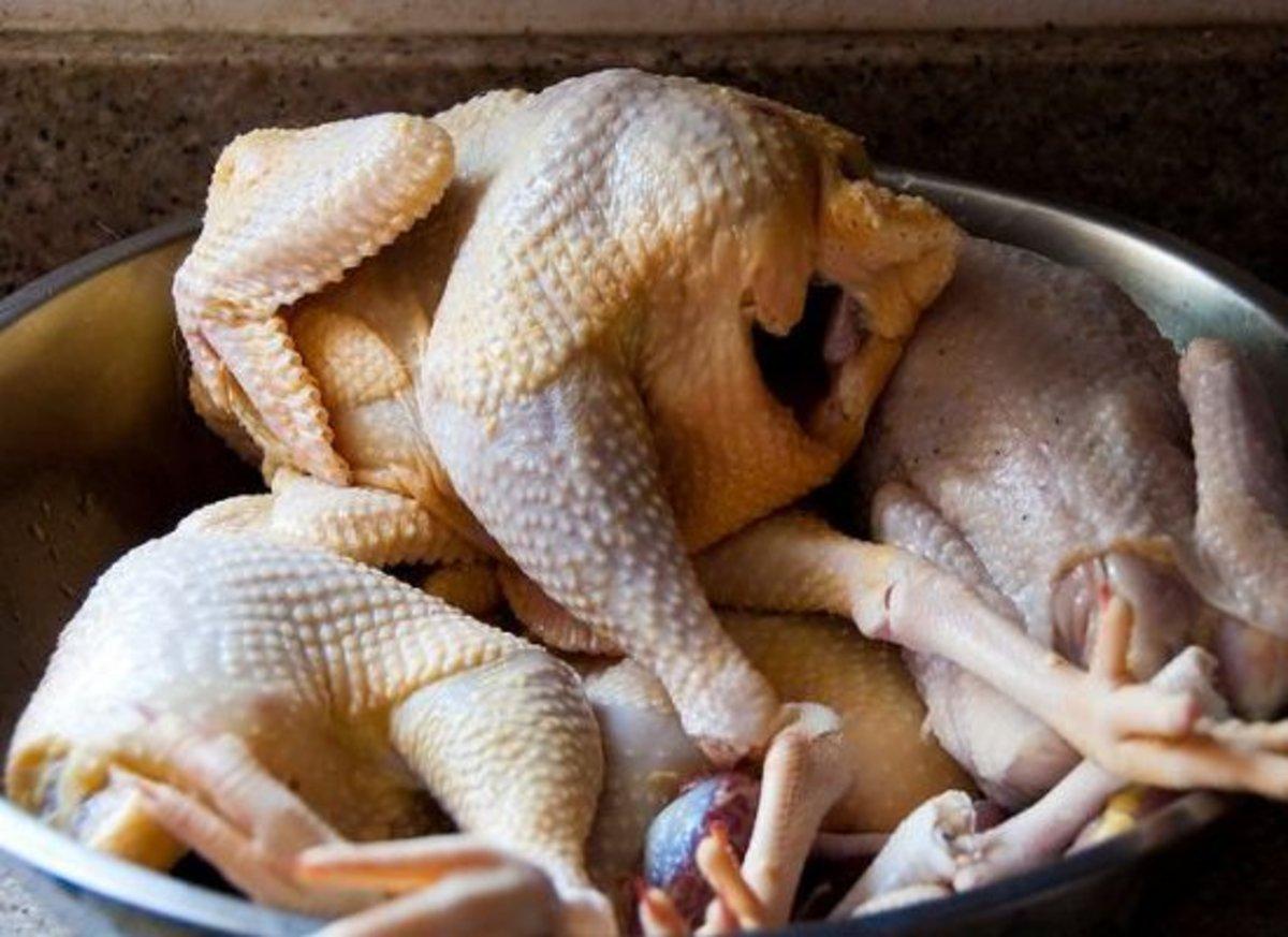 chicken-ccflcr-hermitsmoores