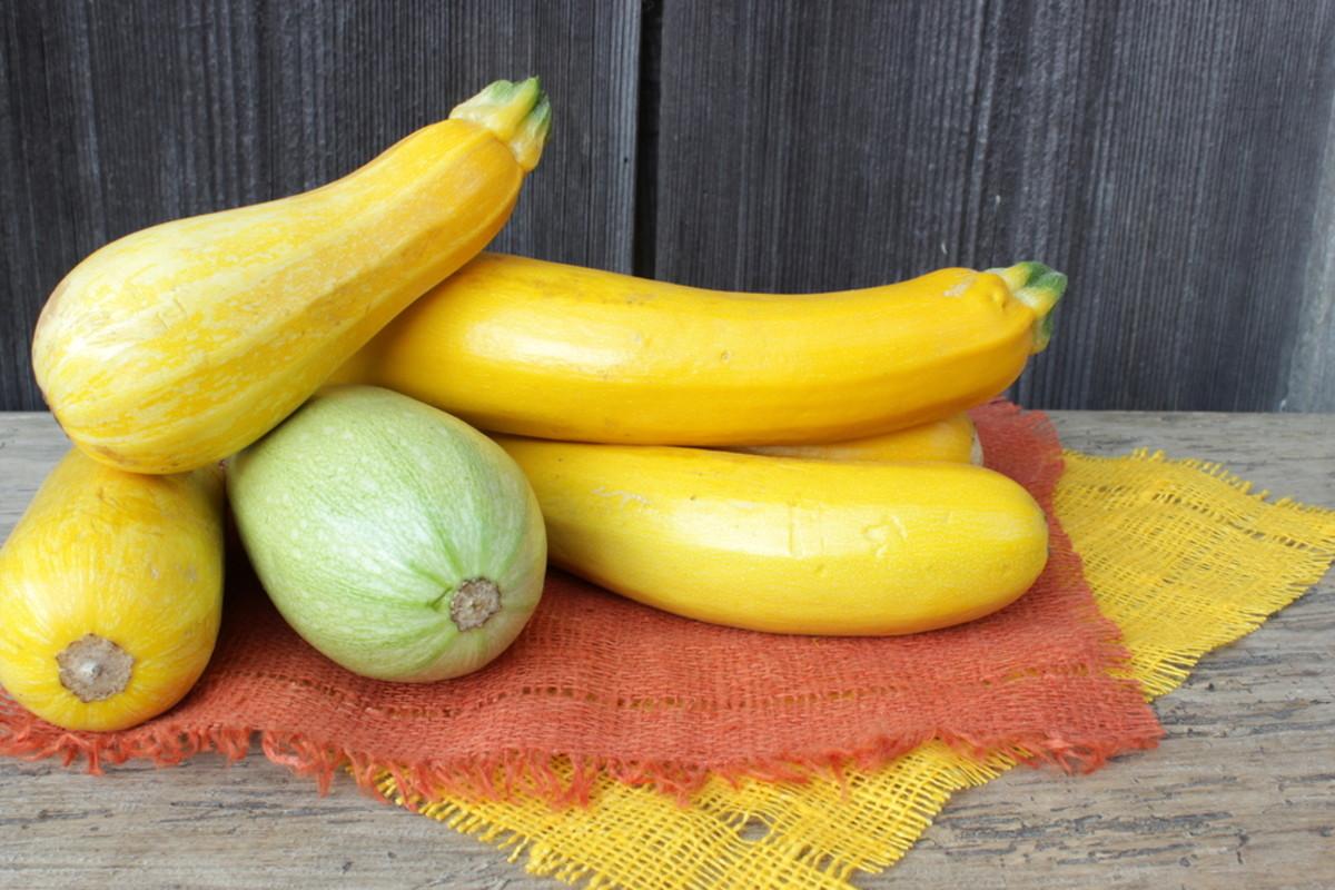 yellow summer squash recipes