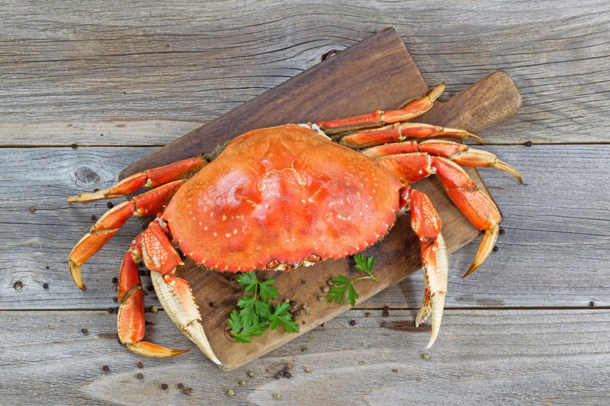 Amnesic Shellfish Poisoning Linked to California's Dungeness Crabs