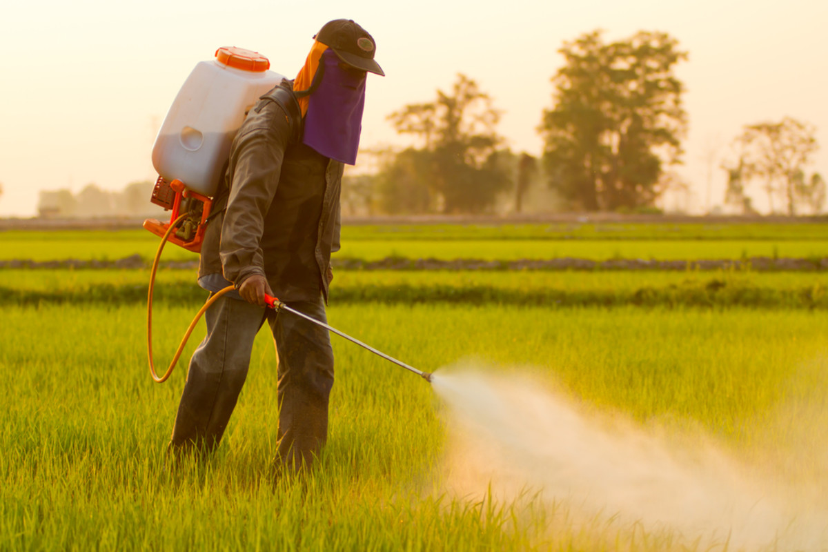 EPA Proposes to Ban Use of Chlorpyrifos in Agriculture