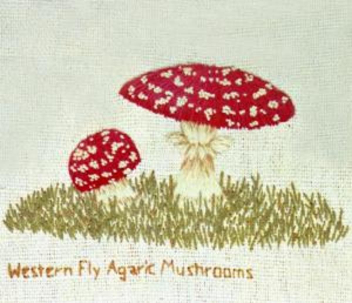 Mushroom embroidery patterns.