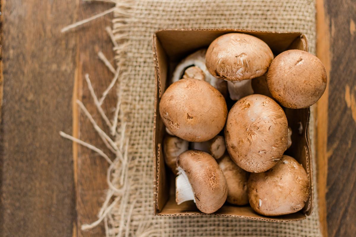 Box of Mushrooms