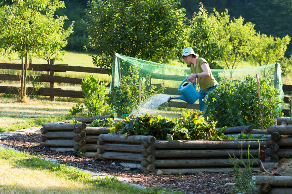 There are definite advantages to using raised beds for gardening.