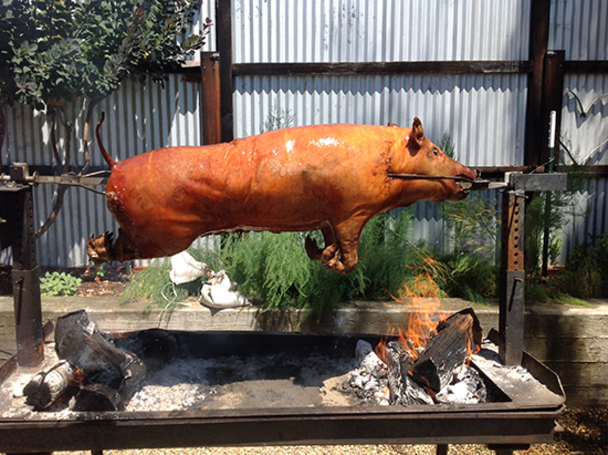 A picture of a pig roasting outdoors at Mateo's Cocina Latina