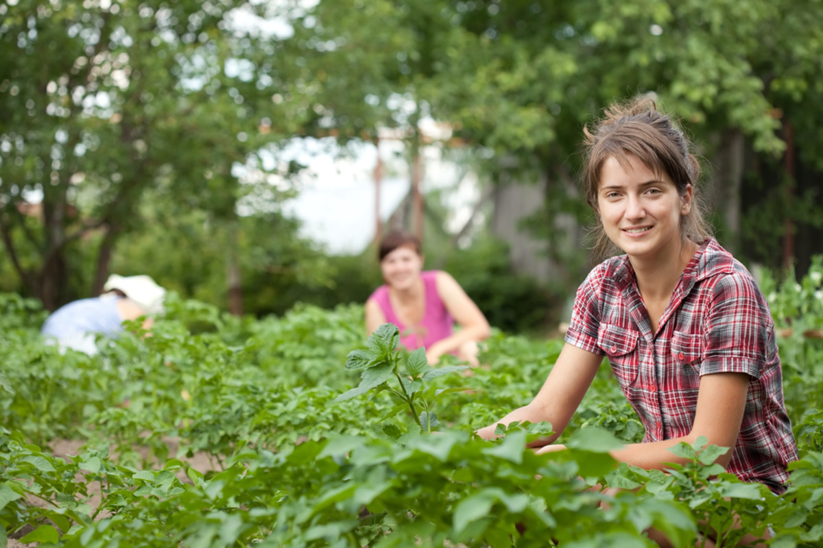 The New Faces of the American Family Farm: Sisters