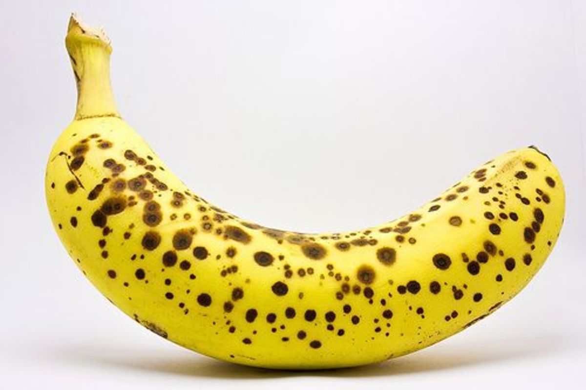 Image result for banana slices hd