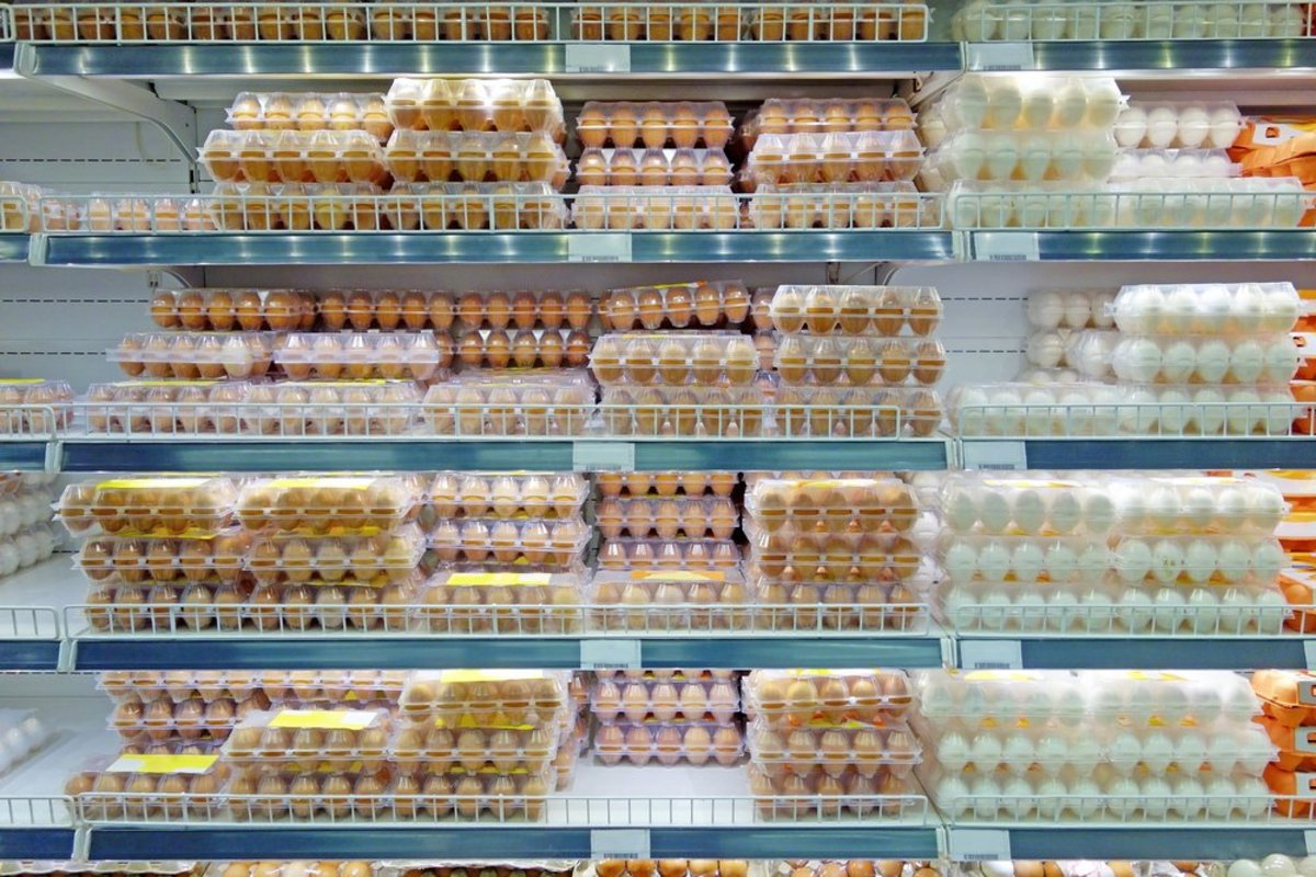 publix adopts cage-free eggs policy