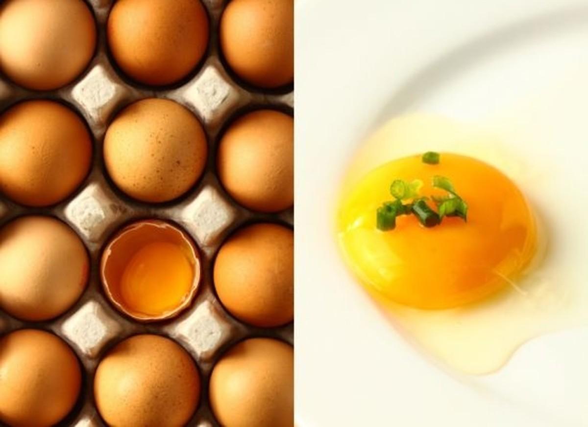 eggs-ccflcr-foodring