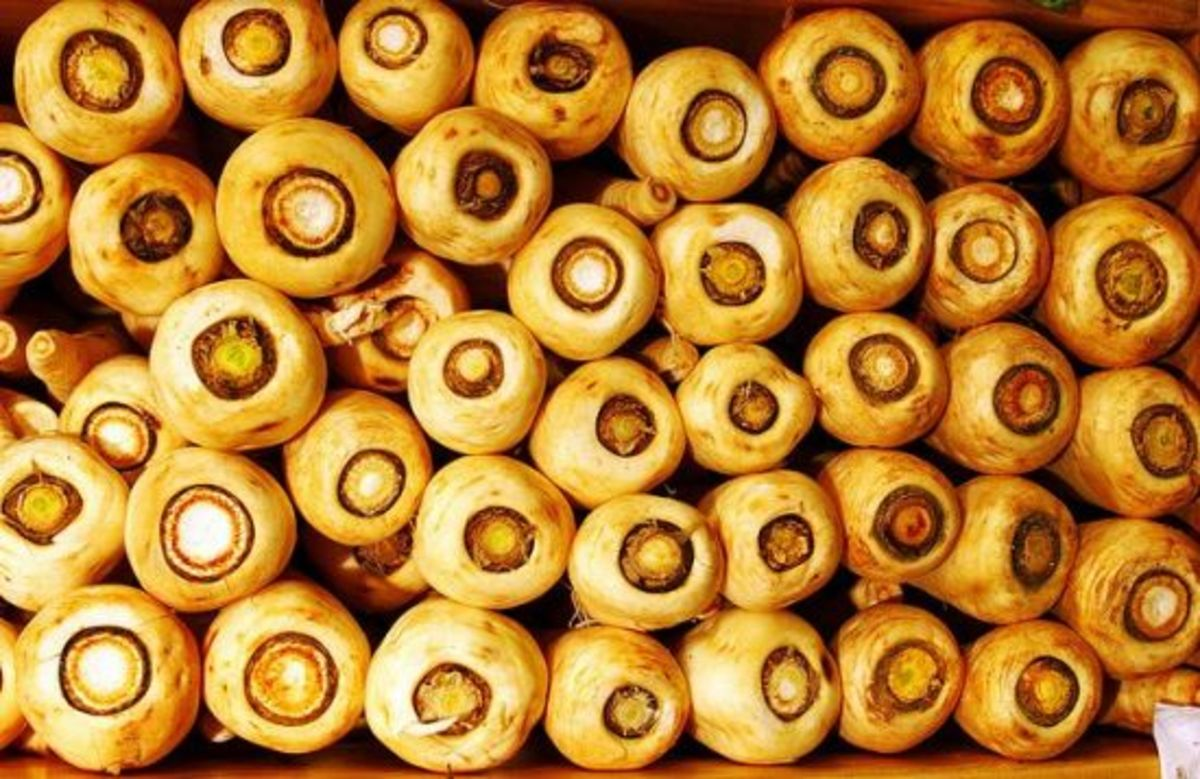 parsnips-ccflcr-muffet