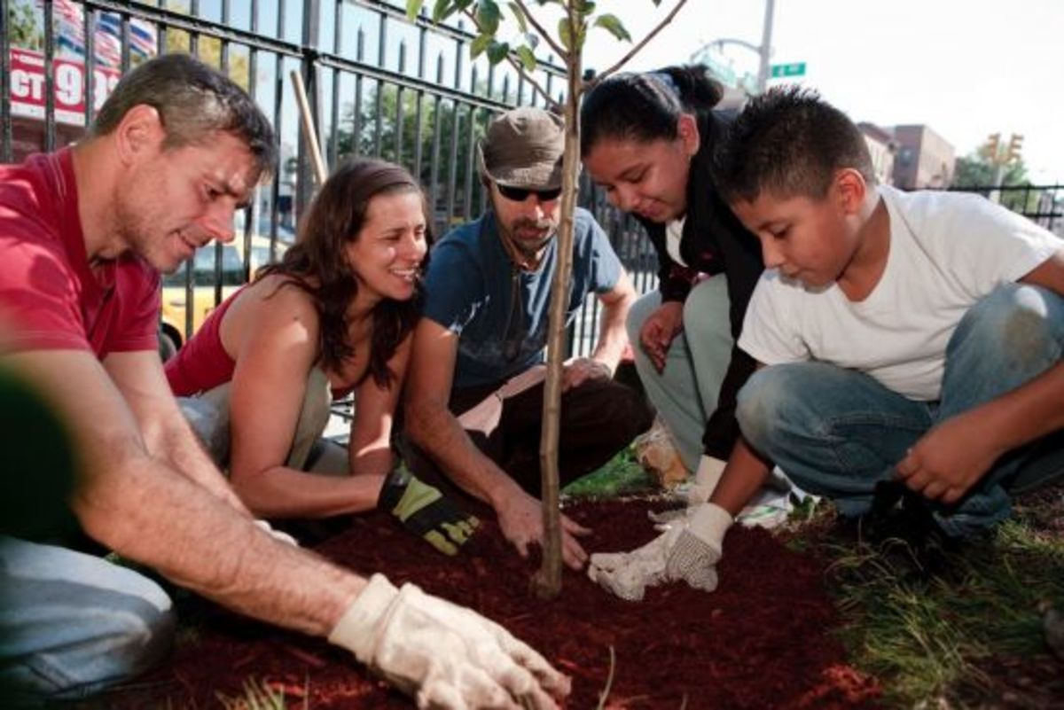 FTPF plants fruit trees for a healthy planet