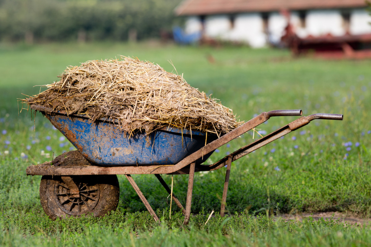 Judge Says USDA Must Protect Organic Crops from Pesticide-Contaminated Compost