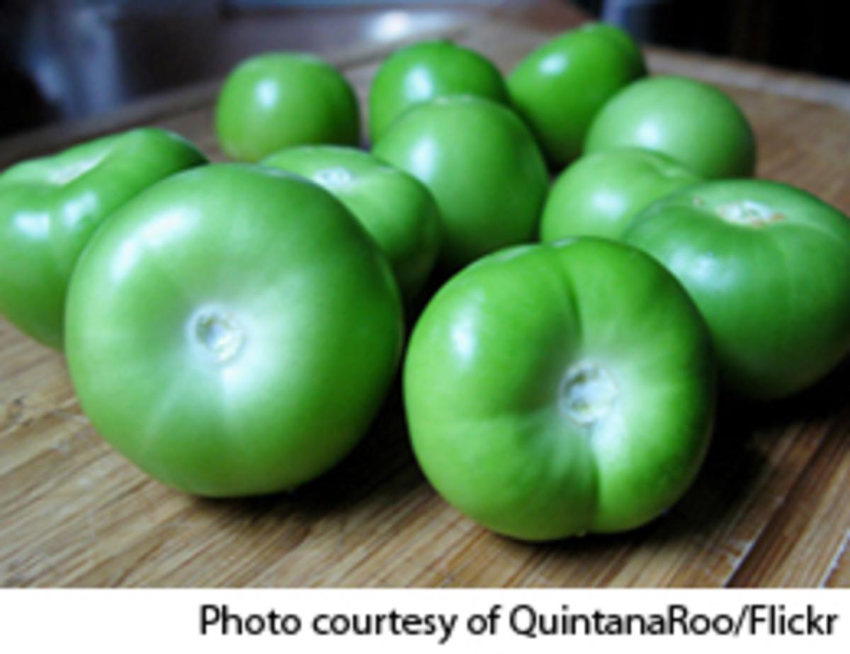 tomatillos-quintanaroo3