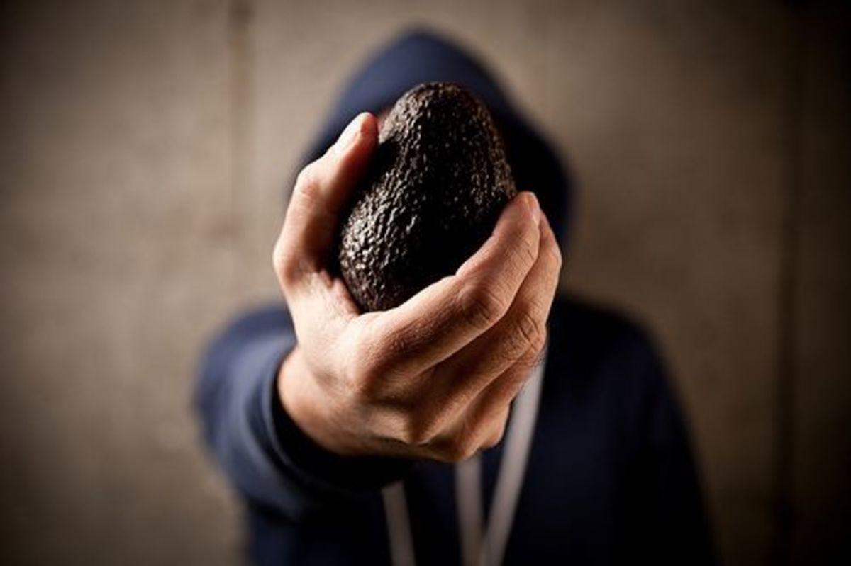 avocado-hand-ccflcr-nate-steiner