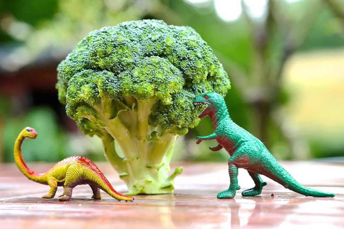 broccoli benefits even work for dinosaurs!