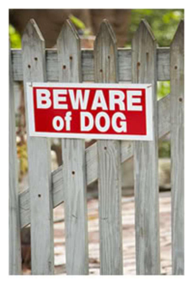 bewareofdog1