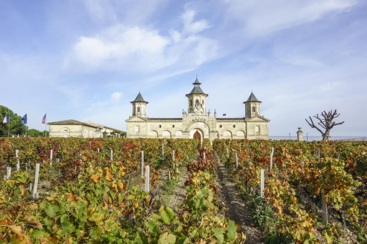 Bordeaux wine country