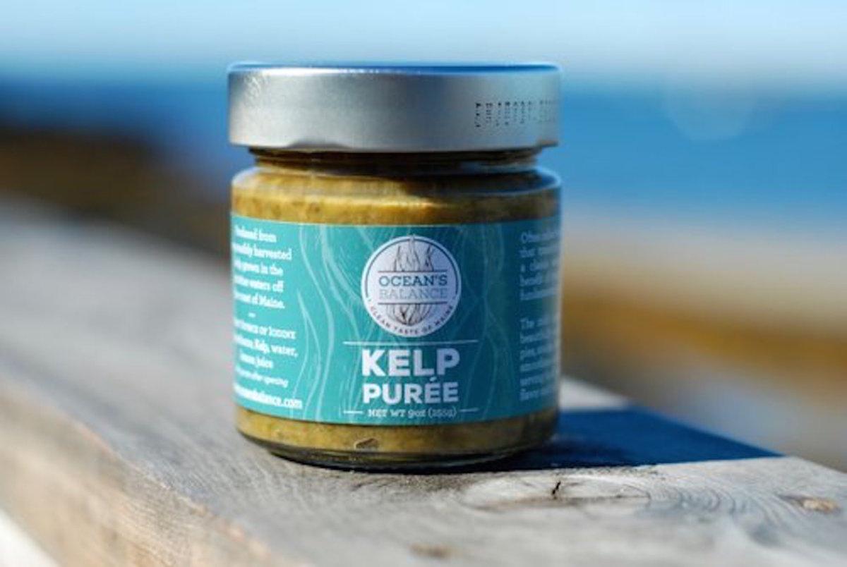 Ocean's+Balance+Kelp+Purée+color+pic#2