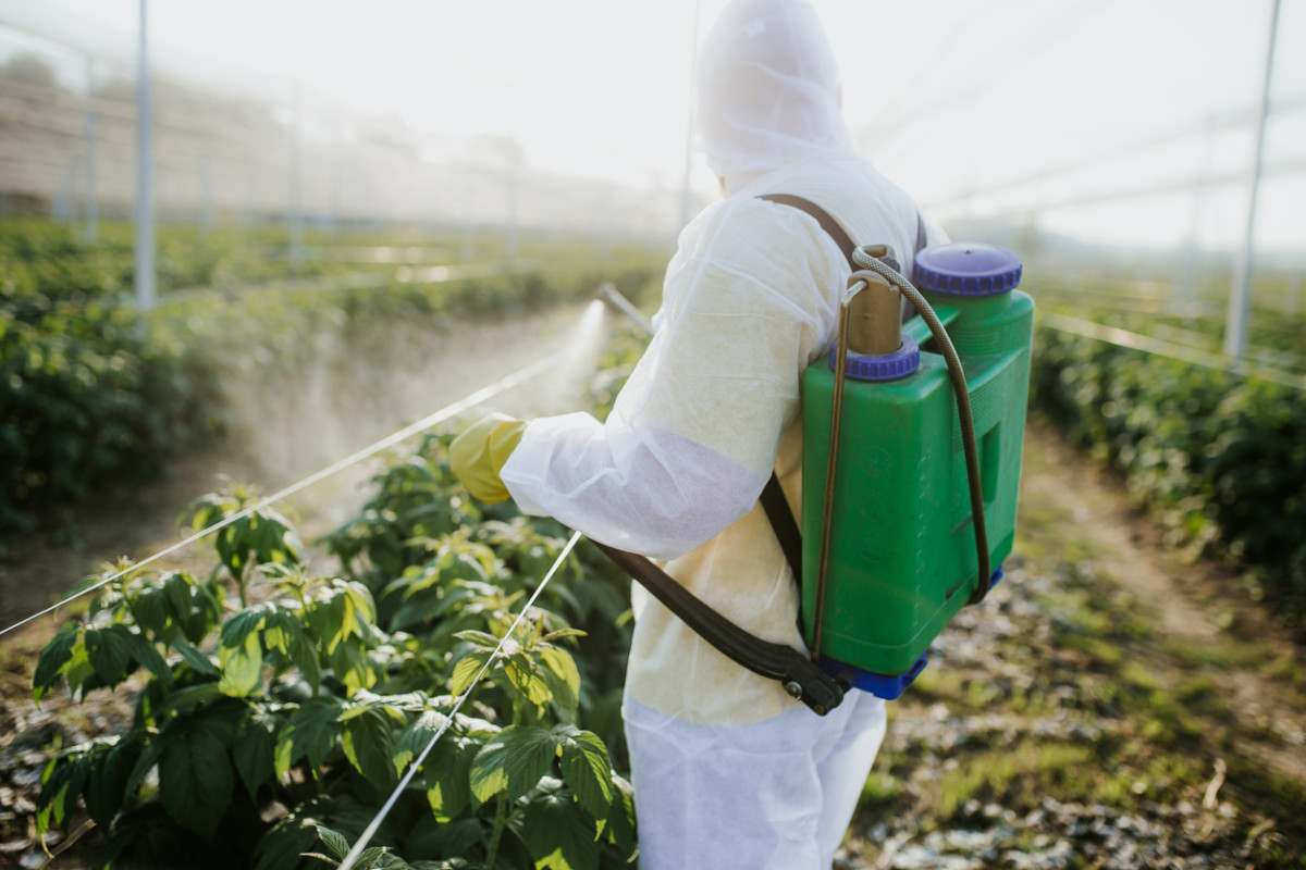 New Lawsuit Claims Farmers Were Forced to Use a Dangerous Herbicide
