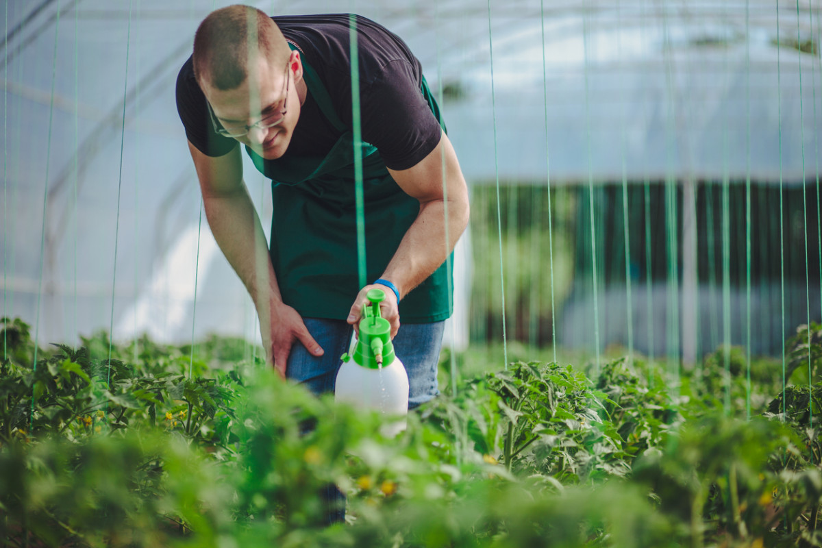 Organic Hydroponic Operations Allegedly Using Glyphosate