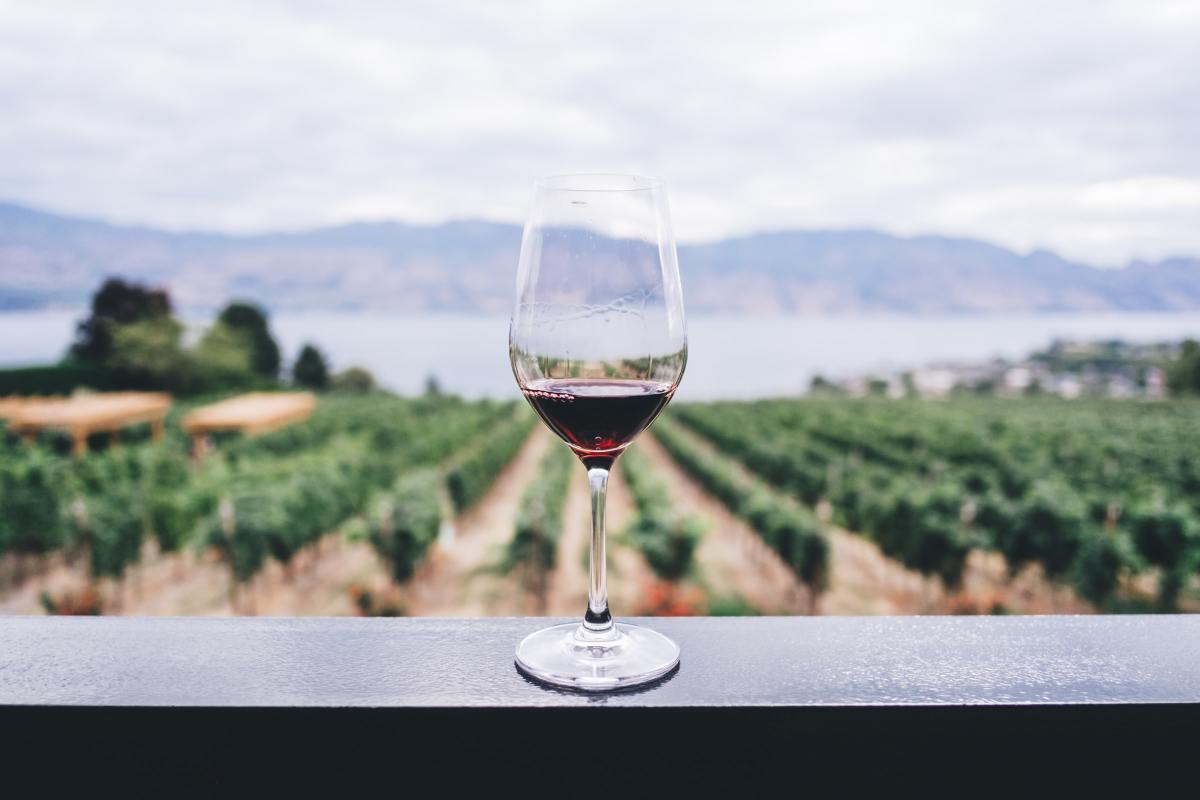 11 Great Wine and Meal Delivery Services in the Time of COVID-2019
